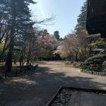 【閑話休題】平林寺に行ってきました【のんびり散歩】