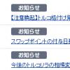 【FX】トルコリラ・ショック?【通算70回目】