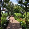 【閑話休題】豊島区役所10F【屋上庭園 豊島の森へお散歩】